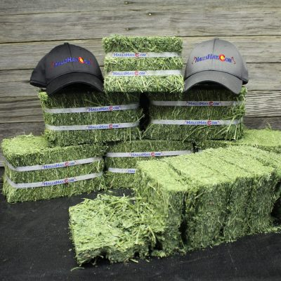 3rd Cutting Alfalfa 6 Bale Small Pet Pack
