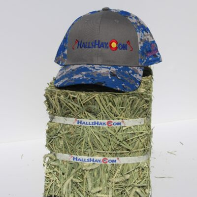 Charcoal / Royal Blue HallsHay.Com Double Mesh Back Digi-Camo Hat
